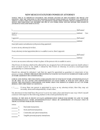 Picture of New Mexico Statutory Power of Attorney