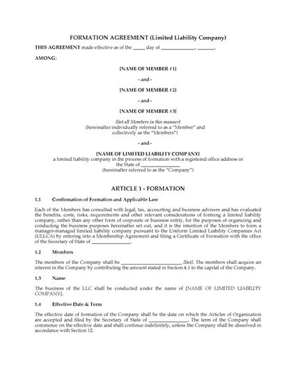 Picture of USA LLC Formation Agreement with 3 Classes of Members