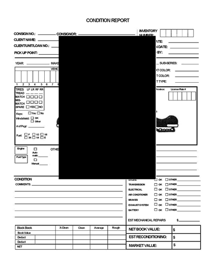 Picture of Vehicle Auction Condition Report for Snowmobile
