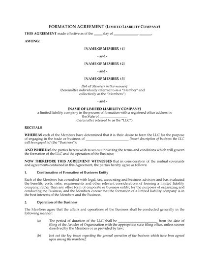 Picture of USA LLC Formation Agreement
