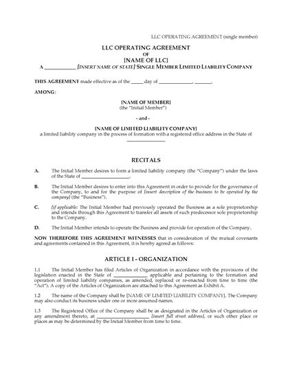Picture of USA LLC Operating Agreement for Single Member Company