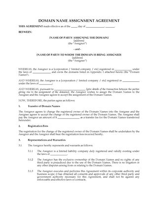 Picture of Domain Name Assignment Agreement