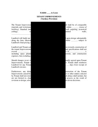 Picture of Commercial Lease Turnkey Provisions for Tenant Improvements