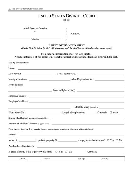 Picture of Surety Information Sheet | USA