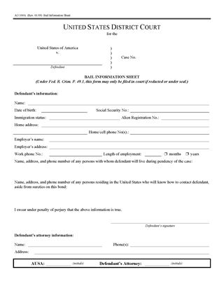 Picture of Bail Information Sheet (USA)