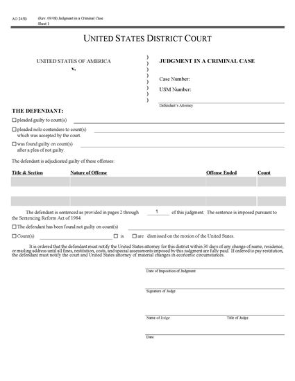 Picture of Judgment in Criminal Case (USA)