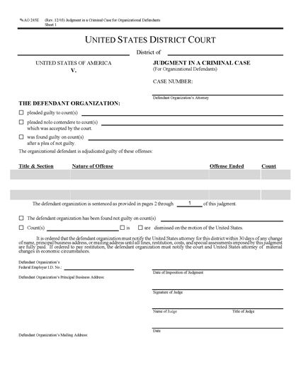 Picture of Judgment in Criminal Case for Organizational Defendants (USA)