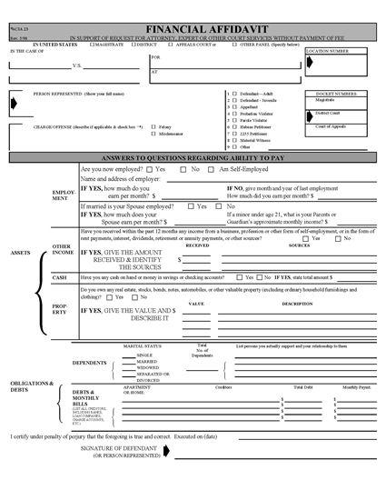 Picture of Financial Affidavit (USA)